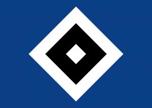 Das HSV Logo
